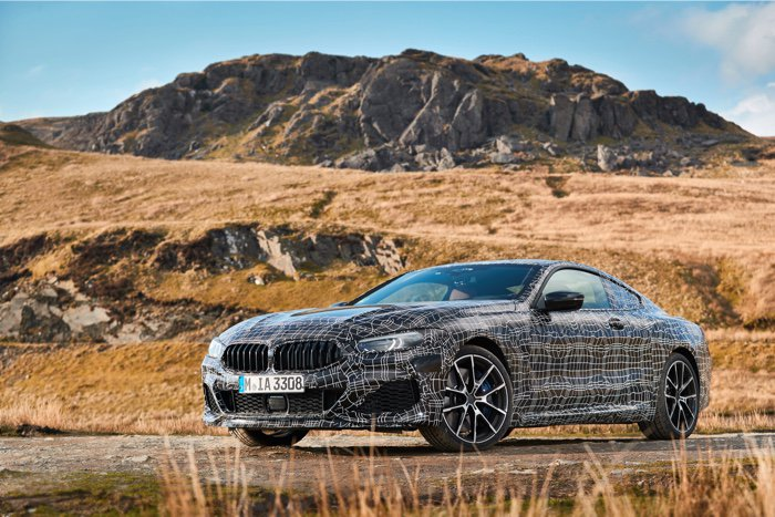 BMW 8 series coupe (2).jpg